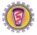 HIV: il virus che non è un virus