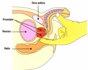 Come trovare e stimolare la prostata (punto L)